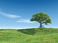 丘と木陰の自転車