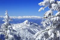 長野県 雪の志賀高原