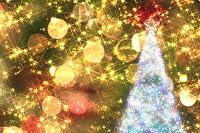 クリスマスイルミネーションとクリスマスツリー