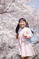 桜の下でランドセルを背負う女の子