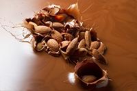 チョコレートにアーモンド