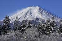 静岡県 降雪後の富士山
