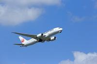 日本航空 787
