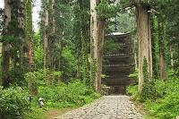 山形県 羽黒山の五重塔