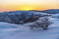 長野県 冬の美ヶ原の夜明け