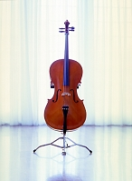 音楽 楽器