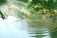青森県 湖面の波紋と太陽光