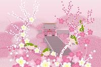 春の鶴岡八幡宮 イラスト