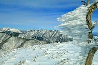 三重県 冬の竜ガ岳から御池岳(左奥)と藤原岳(中央)