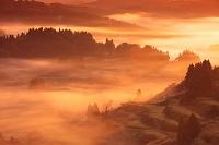 新潟県 霧の星峠の斜陽