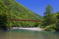 秋田県 抱返り渓谷 玉川と神の岩橋
