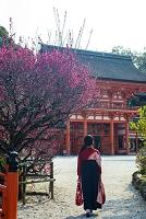 下鴨神社 紅梅と楼門と羽織袴の女性