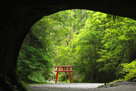 鹿児島県 溝ノ口洞穴