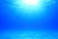 沖縄県 黒島 水中