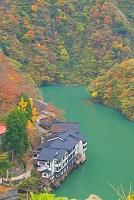 富山県 紅葉の大牧温泉