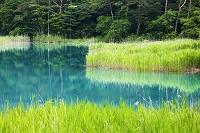 福島県 五色沼