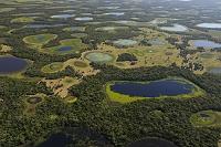 ブラジル パンタナル(熱帯性湿地)