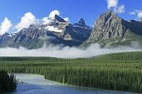 カナダ アサバスカ川沿いの針葉樹の森とロッキーの山並み