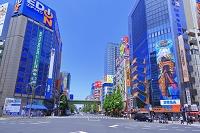 東京都 秋葉原の電気街