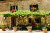 イタリア 壁に並んだ鉢植え