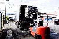 銚子港・保冷車に冷凍サンマを積み込む