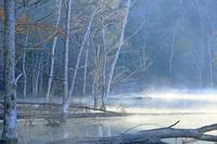北海道 屈斜路湖畔のキンムトーの紅葉
