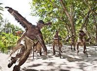 バヌアツ タカ村(Taka Village) タカ村の人たちのダンス