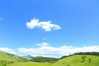 長野県 霧ヶ峰高原 緑の草原と青空
