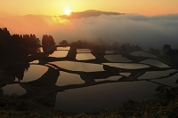 新潟県 朝もやの山並みと棚池