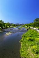 京都府  京都市 鴨川