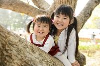 木の枝に乗る日本人の子供