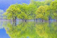 山形県 白川ダム