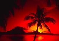 南国の日没