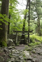 栃木県 瀧尾神社子宝石