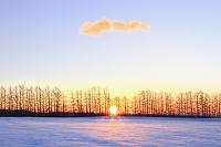 北海道 十勝平野の朝日