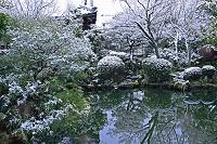 京都府  神光院