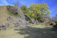 佐賀県 肥前名護屋城 馬場
