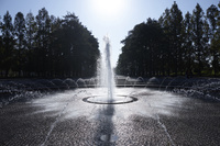 鶴見緑地公園の噴水
