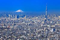 千葉県 都心の街並みと東京スカイツリーと富士山