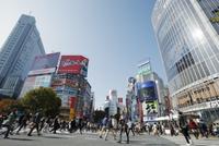 東京都 渋谷スクランブル交差点
