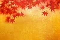 金屏風と紅葉と扇子