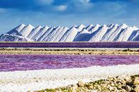 オランダ領 ボネール島の塩湖