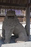 京都府 宮津市 元伊勢 籠神社の阿形狛犬