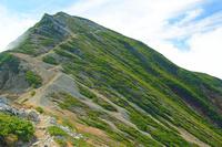 長野県 爺ケ岳南峰