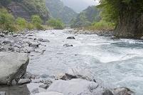 安倍川 上流