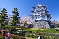 埼玉県 行田市 忍城と桜