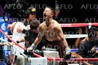 ボクシング:WBO世界Sフライ級王座決定戦
