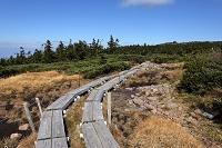 福島県 西吾妻山の高層湿原