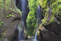 大分県 新緑の由布川渓谷