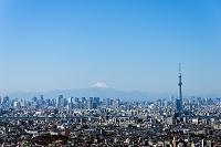 千葉県 富士山と東京スカイツリー